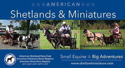 American Shetland Pony Association