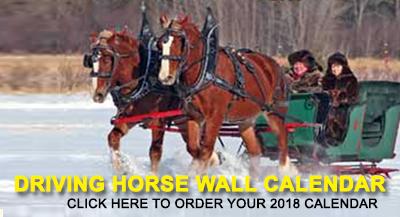 Driving Horse Wall calendar 2018